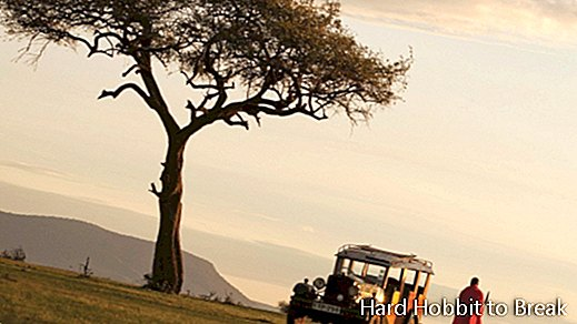 The best safaris in Africa