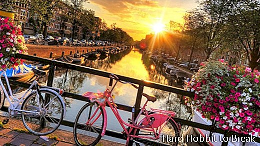Essential visits in Amsterdam