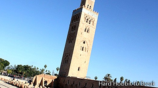 4 things you can't miss in Marrakech