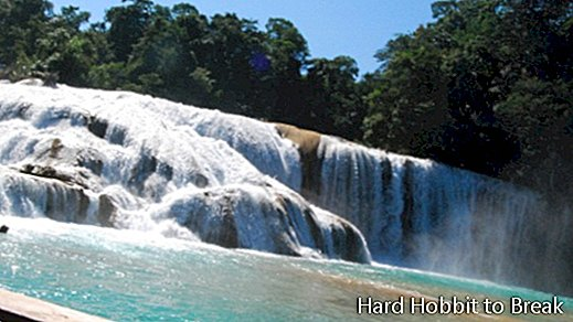 The Agua Azul Waterfalls in Mexico
