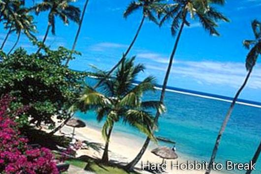 The Fiji Islands: White sand beaches, coconut trees and sea beds