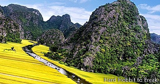 The spectacular Trang An bay in Vietnam