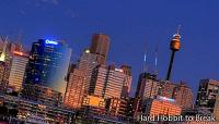 The Sydney Tower, a spectacular viewpoint