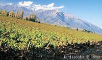 Wine tourism in Chile