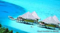 Curiosities about Bora Bora