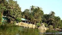 Visit the Giza Zoo in Cairo