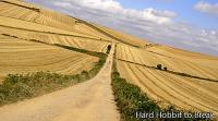 Do the Camino de Santiago by bicycle