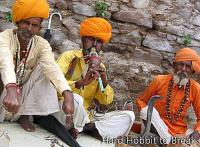 Tours of Rajasthan