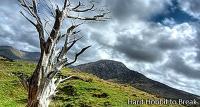 Parc national du Connemara en Irlande