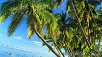 Cook Islands: an unknown paradise