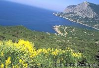 Visit the Crimean seaside resorts on the Black Sea